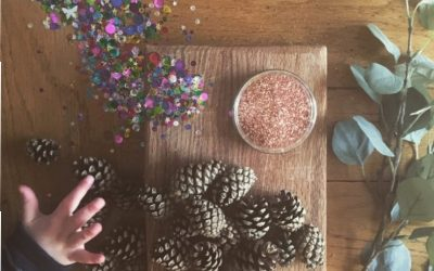 Fir Cone Decorations
